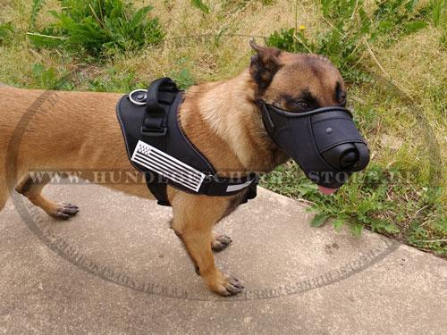 Designer-Maulkorb aus Leder und Nylon für Diensthunde