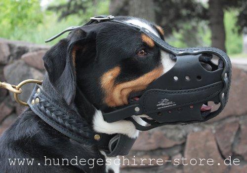 Hundemaulkorb Leder mit Schnellverschluss für Alltag und Dienst
