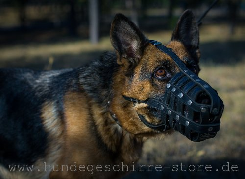 Safe leather muzzle best ventilated