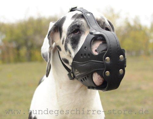 Ledermaulkorb gute Luftzirkulation für große Hunderassen