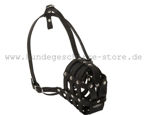 Designer Muzzle Leather