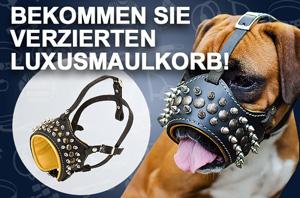 Hundehalsband aus Metall mit abnehmbaren Gliedern