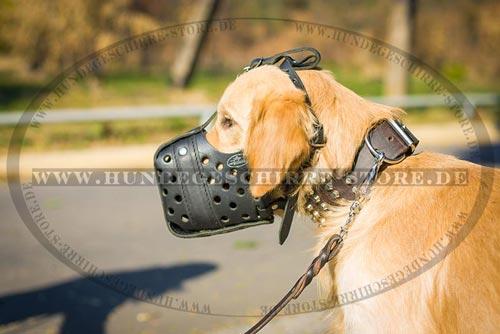 Ledermaulkorb mit guter Belüftung für Diensthunde