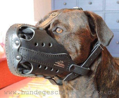 Robuster Hundemaulkorb Leder für Alltag und Dienst mit Schnalle
