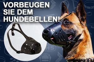 Leder Hundegeschirr, vernietet