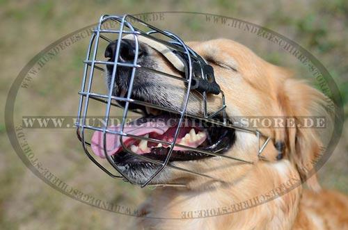 Drahtkorb für Hundetrainig mit Polsterung