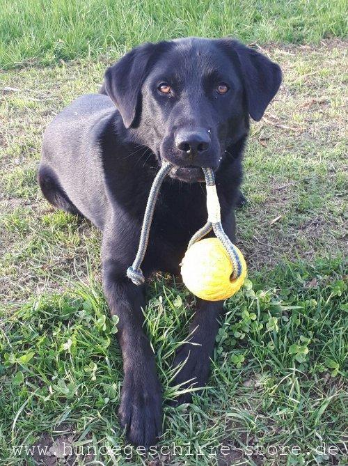 Schaumgummiball für hunde unkaputtbar
