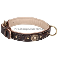 Nappa leather collar with brass plates and braiding