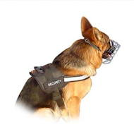 German Shepherd Sport Harness: Tracking and Service