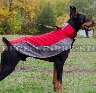 Hundemantel für Dobermann aus Nylon für Winterzeit