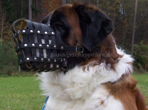 Hundemaulkorb fuer St. Bernhard M41R