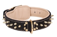 Hundehalsband aus Leder mit Messing-Spikes und Nappa-Futter