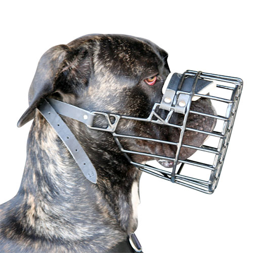 /images/large/M10-wire-dog-muzzle-UK_LRG.jpg