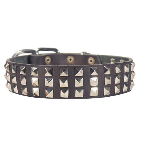 Pyramiden-Halsband Leder extra Breit mit Beschlägen aus vernickeltem Stahl