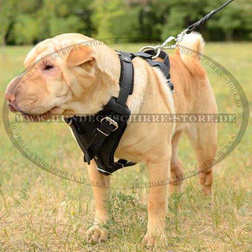 Professionelles Ledergeschirr für Dienst und Polizeihunde