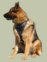 Protection/Attack Leather Dog Harness H1for German Shepherd