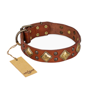 "Hundehalsband Leder breit ""Flight of Fancy"" FDT Artisan, tan"
