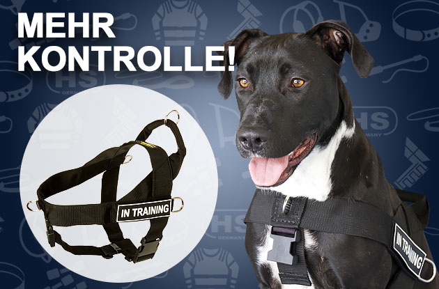 Hundegeschirr nylon pitbull
