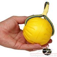 Schaumgummiball für Hundebeibrungung und Sport