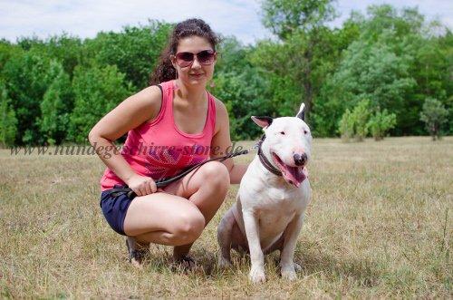 Fotos mit dem Hund